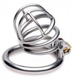 The Pen Deluxe Stainless Steel Chastity Cage
