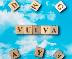 6 Things You Should Know About Vulvas
